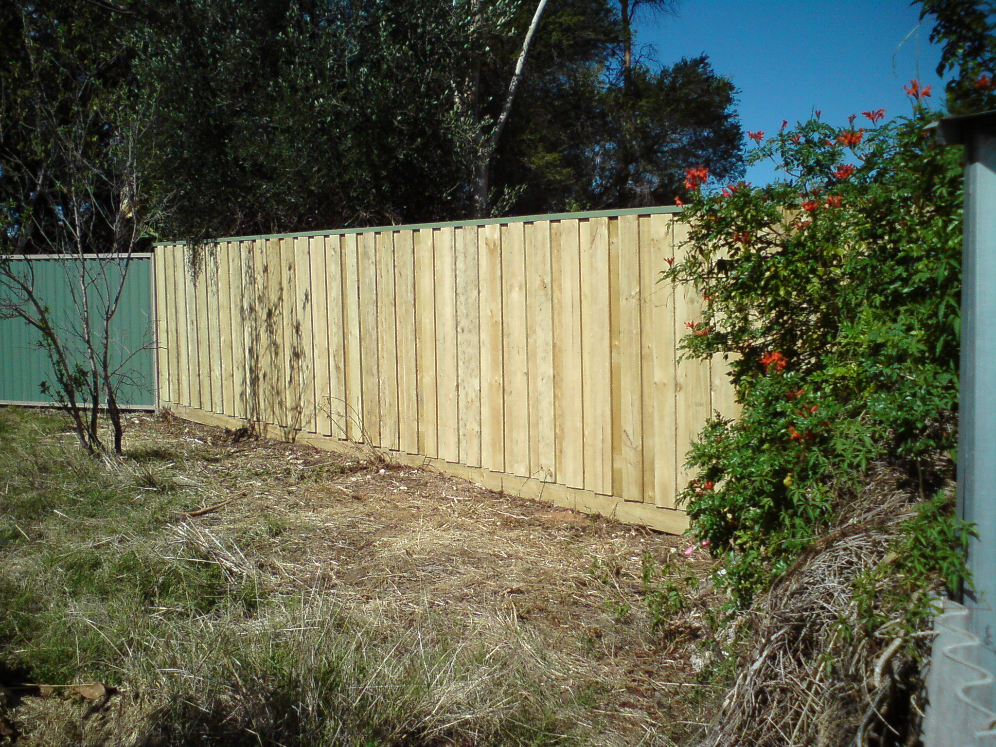 timberfencing04
